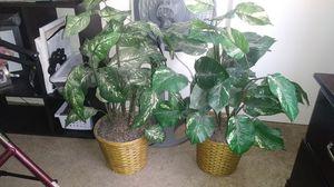 Nice fake plants for Sale in Avondale, AZ
