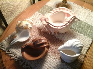 Sea shell pots for small plants for Sale in Lakeside, AZ