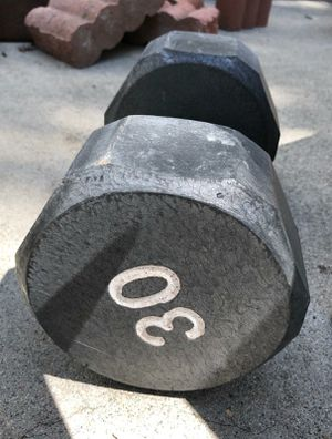 30 pound weight for Sale in Burbank, CA
