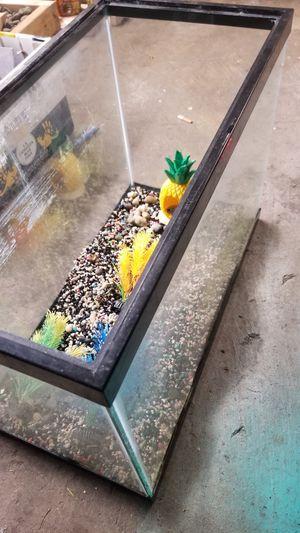 20 gallon fish tank for Sale in Tacoma, WA