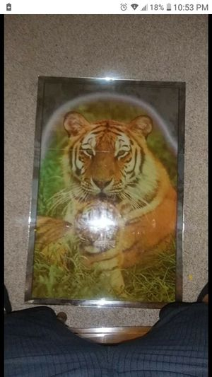A lion mirror for Sale in Buffalo, NY