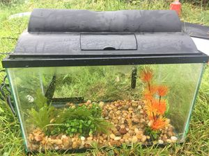 5 gallon Topfin fish tank used with accessories for Sale in Hanover, MD