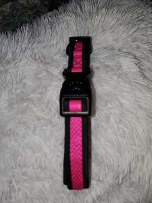 Dog Collar (Top Paw medium-large) for Sale in Tracy, CA