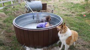 Insulated galvanized pool faux wood cedar hot tub for Sale in Tacoma, WA