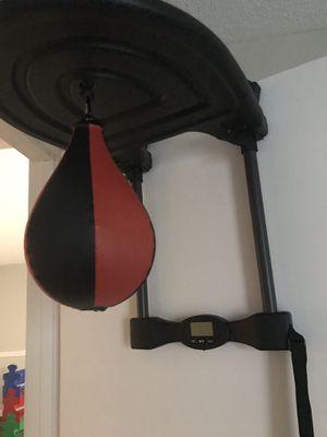 Speed bag/punching bag for Sale in Fairburn, GA