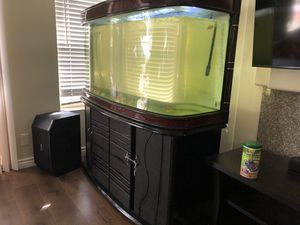 Curved glass fish tank with stand for Sale in Moreno Valley, CA