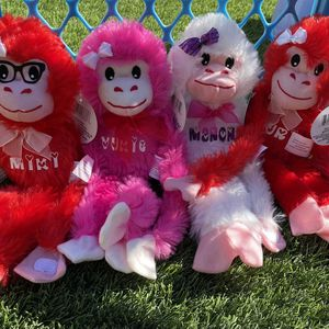 Personalized Valentines Day Monkey Gift for Sale in San Diego, CA