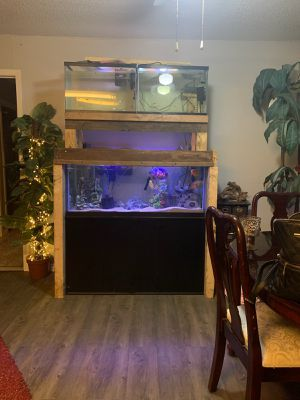 75 gallon aquarium and stand and two 20 gallon on top for Sale in Highlands, TX