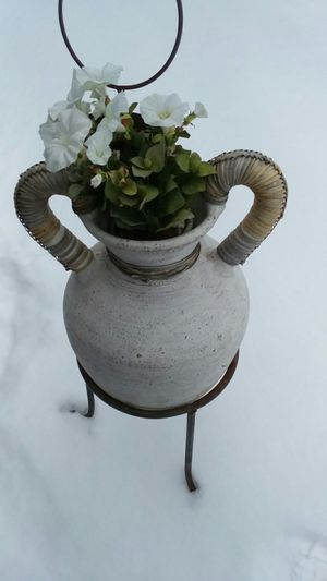 Flower pot and stand for Sale in Coon Rapids, MN
