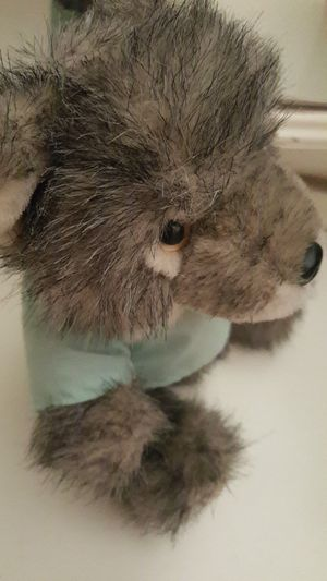 Stuffed toy fox - Richard Wolf for Sale in Annandale, VA