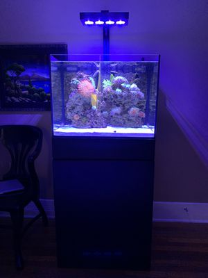 45 Gallon Reef Tank with Stand for Sale in San Diego, CA