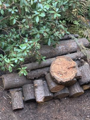 Free wood for Sale in Springfield, OR