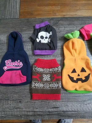 Xxs dog sweaters and extra small harness for a tiny like teacup chihuahua for Sale in Fresno, CA