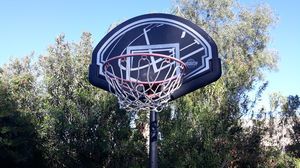 LIFE TIME BASKETBALL HOOP for Sale in Phoenix, AZ