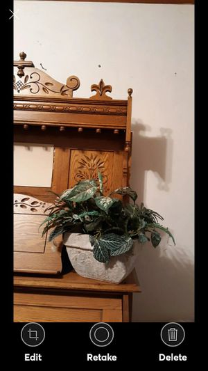 BEAUTIFUL GREENERY IN A WHITE WASH PLANTER for Sale in Lynchburg, VA