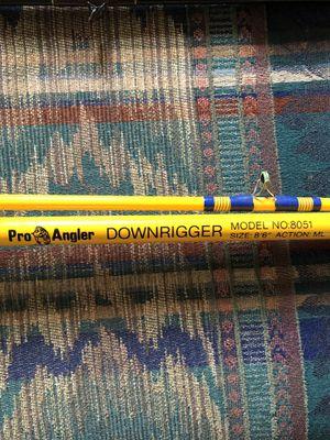 Vintage Pro Angler Downrigger Fishing rod for Sale in Evansville, IN