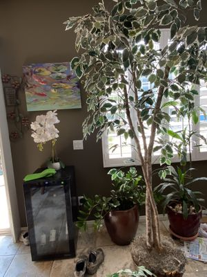 Fake plant. 8 ft $35 for Sale in Norco, CA