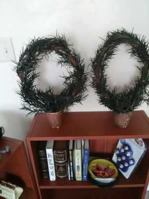 Faux Rosemary Topiaries for Sale in Hinesville, GA
