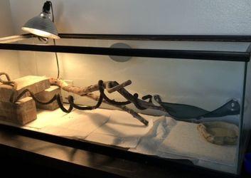 Tank/aquarium for Sale in Dunedin,  FL