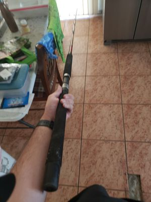 Seeker classic fishing rod for Sale in Perris, CA