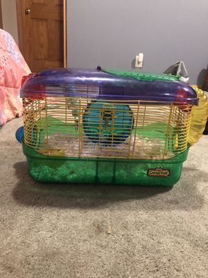 Two hamsters with every thing for Sale in Lincoln, NE