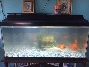 Fish tank for Sale in Alexandria, VA