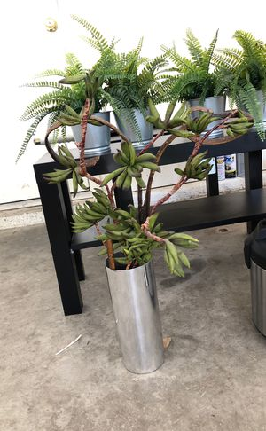 Plant (fake) for Sale in Henderson, NV