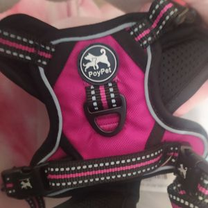 Extra Small Harness brand New for Sale in Middle River, MD