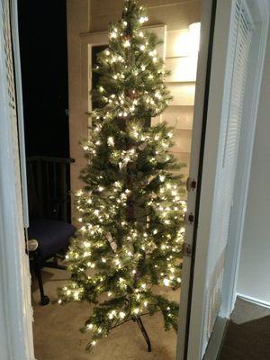 Christmas Tree for Sale in Ashburn, VA