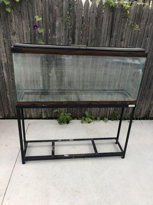 55 gallon fish tank w/ stand for Sale in Chicago, IL