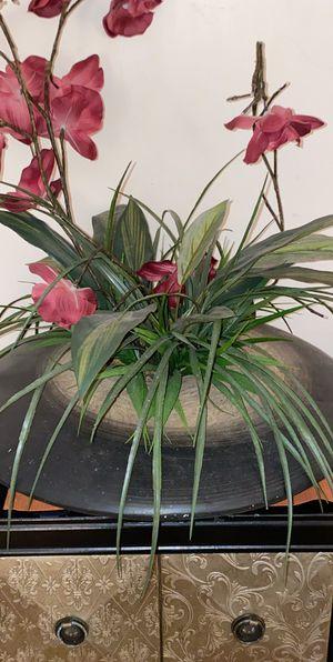 Decor plant for Sale in Brockton, MA