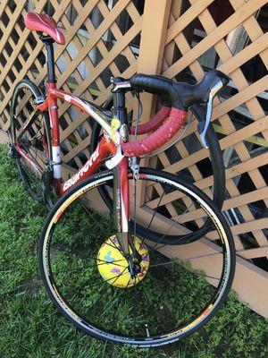 Bianchi carbon road bike 53 for Sale in Washington, DC