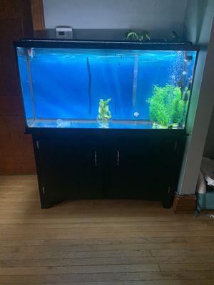 60 gal fish tank with stand for Sale in Chicago, IL