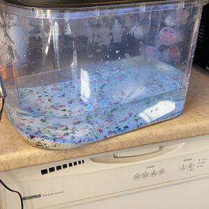 5 Gallon Fish Tank for Sale in West Sacramento, CA