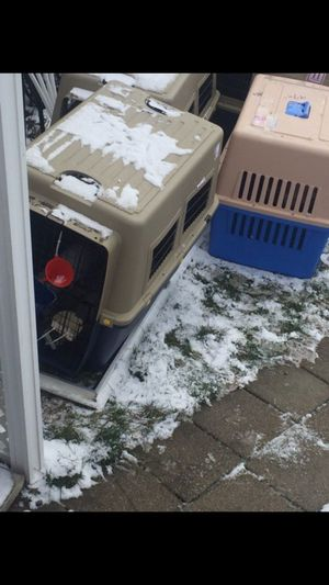 Large and extra lage dog crate for Sale in Pittsburgh, PA