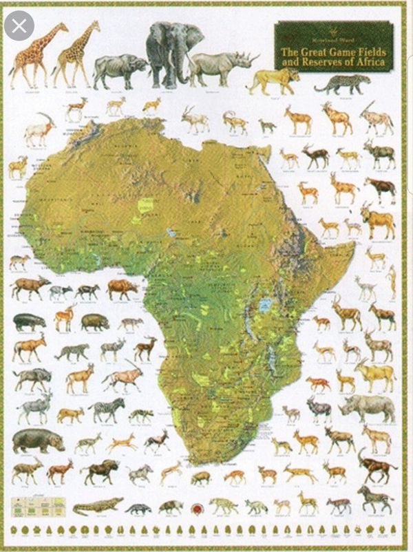 Rowland ward africa games poster