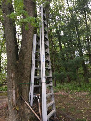 Ladder 14' Werner commercial for Sale in Marlboro Township, NJ