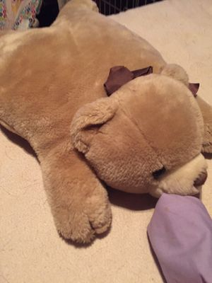 Pillow pet stuffed bear $6.00 for Sale in Peoria, AZ