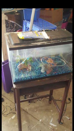 10 gallon aquarium with accessories for Sale in Columbus, OH