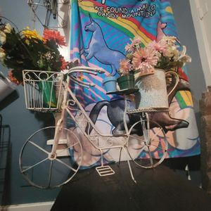 Garden Decorations Bike, Watering Can, Tall Flower Pot Holder for Sale in Sebring, OH