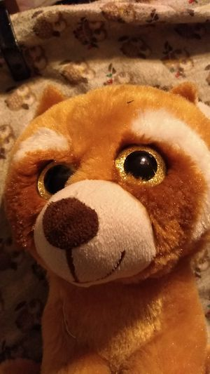 Stuffed animal for Sale in Shoreview, MN