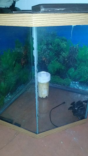 I am selling a fish tank call me (407)715-8777for sale good condition for Sale in Orlando, FL