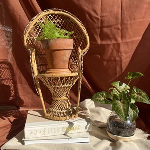 Antique Wicker Peacock Plant Chair for Sale in Fuquay-Varina, NC