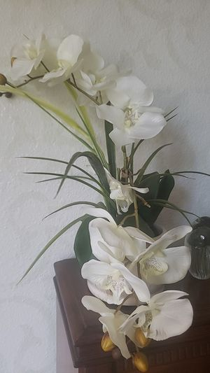 Fake- Realistic looking Orchid Plant- Decor for Sale in Bellevue, WA