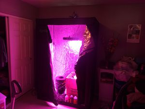 Grow tent with whole setup for Sale in Tolleson, AZ