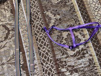 Dog Harness And Leash Purple/Multicolored Small-Medium for Sale in Lakeland,  FL