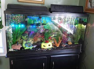 Aquarium for Sale in Ecorse, MI