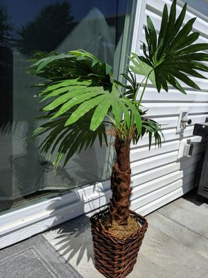 Fake palm tree for Sale in Pasco, WA