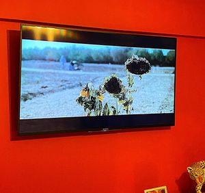 """LIKE NEW 49"""" SONY BRAVIA LED SMART TV 4K ULTRA HDTV & HIGH DYNAMIC RANGE for Sale in New York, NY"""