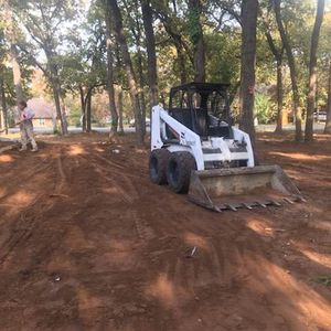 Bobcat for Sale in Irving, TX